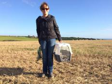 Wildlife rescue volunteer holding a carry box in a field